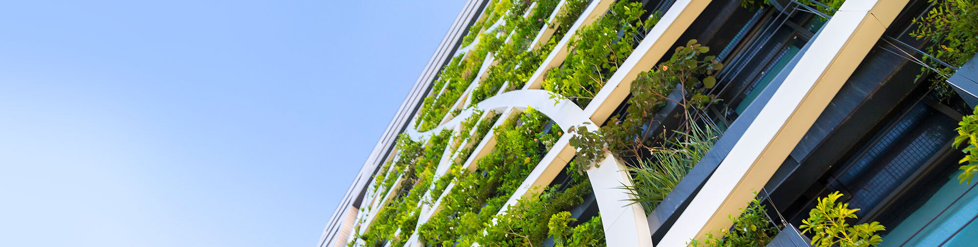 Clean city type building with vertical gardens up the sides of the structure